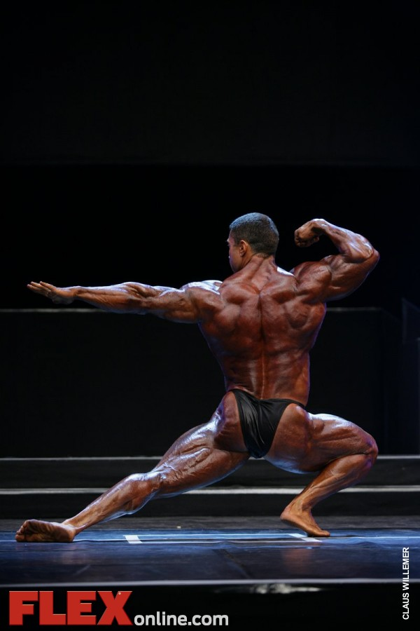 Sergey Shelestov - Men's Open - 2012 FIBO