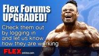 FLEX FORUMS UPGRADED!