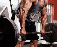 Training Tips for Your Next Workout - Lock Out the Deadlift