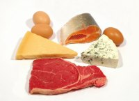 When Overeating, Calories, Not Protein, Contribute to Increase in Body Fat