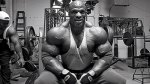 RONNIE COLEMAN CLASSIC GALLERY