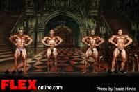 Comparisons - Men's Open - 2012 Europa Supershow Dallas