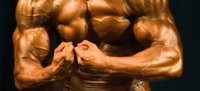 Say Yes to Nitric Oxide for the Ultimate Pump