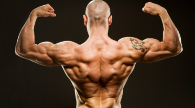 The Lift Doctor: Wider Lats and Bigger Arms