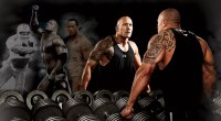 A Piece of The Rock: The WWE's Dwayne 'The Rock' Johnson (WWE)