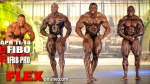 2013 FIBO Prejudging Report - Fitness and Bodybuilding