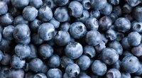 Plan alimentaire : Boostez votre système immunitaire