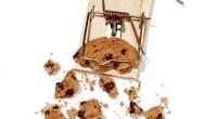 Healthier Eating Habits: Kickin' the Junk Food