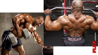 Rows vs. Pulldowns