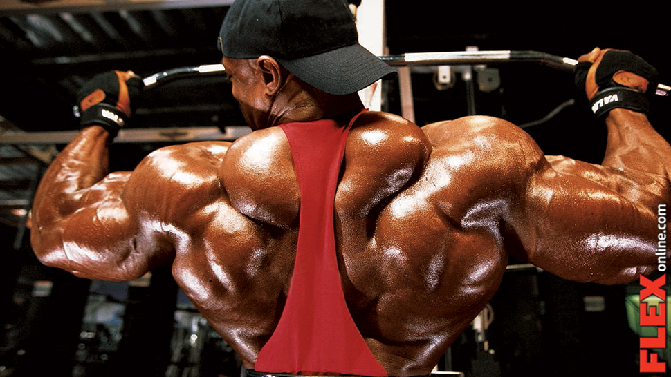 Ronnie Coleman riebalų degintojai. Muscletech Hydroxycut Hardcore Elite kaps.