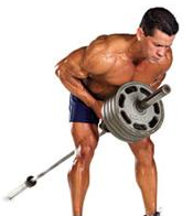 The Jacked Back Workout