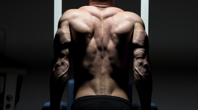 The Best Body Recomposition Workout
