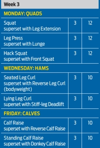 Leg training from hell 3