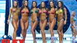 Awards - Bikini International - 2014 Arnold Classic