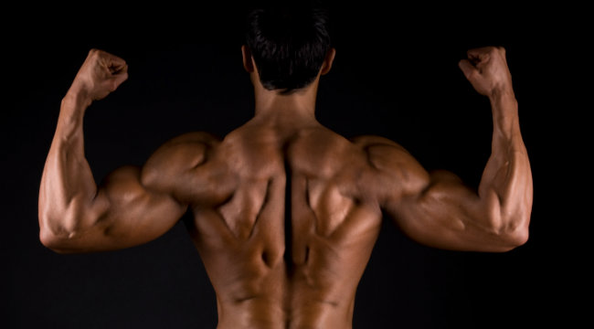 Build Back Muscle With Eccentric Exercise
