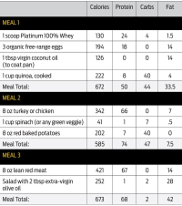 Meal plan training day 1-3