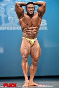 Stan McQuay - Men 212 - 2014 New York Pro Championships