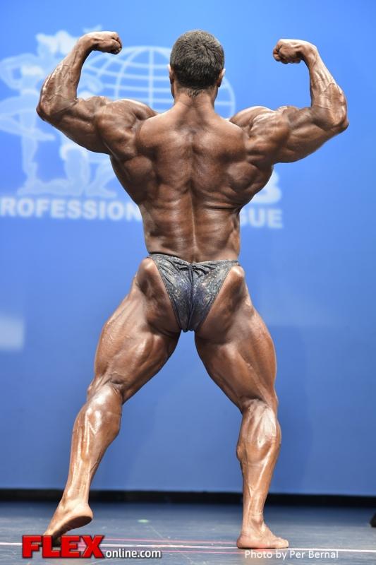 Sergey Shelestov - Men Bodybuilding - 2014 New York Pro Championships