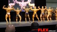 2014 IFBB Toronto Pro: 212 Pre-Judging