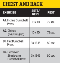 Chest and Back