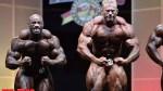 Awards - Men's Bodybuilding - 2014 IFBB Arnold Europe