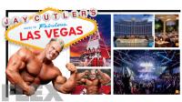 Las Vegas Rotator