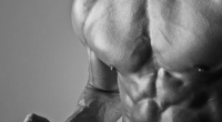 Hercules Workout - Chest