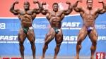Comparisons - Men's Open - 2014 IFBB Nordic Pro