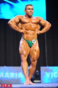 Vincente Santamaria - Men's 212 - 2014 IFBB Prague Pro