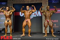 Bodybuilding Finals - 2014 Amateur Olympia Moscow