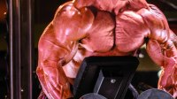 The Real Deal on Protein Systhesis