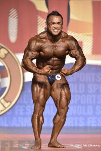 Hidetada Yamagishi - 2015 Arnold Classic 212