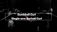 Next Level: Dumbbell Curl vs. Single-Arm Barbell Curl