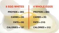 egg-whites-vs-whole-eggs