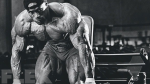 Bodybuilder's Guide to BCAAs