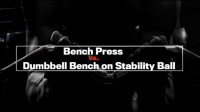 Next Level: Bench Press vs. Dumbbell Bench on Stability Ball