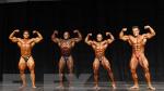212 Bodybuilding Comparisons - 2015 IFBB Toronto Pro