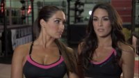 Meet WWE's Bella Twins