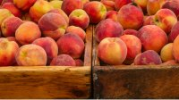 Food of the Month: Peaches
