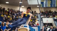 Michigan is Leaps and Bounds Ahead of College Fitness
