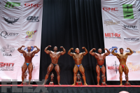 Men's Bodybuilding Middleweight Awards