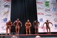 Men's Bodybuilding Light Heavyweight Awards