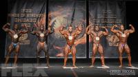 2015 IFBB Chicago Pro Saturday Finals Report