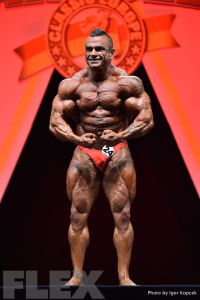 Carlos Ascensio - 2015 IFBB Arnold Europe