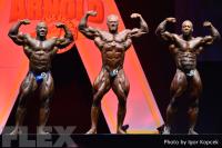 Men's Bodybuilding Comparisons - 2015 IFBB Arnold Europe