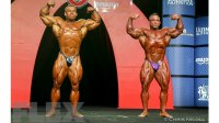 Olympia 212 Showdown Prejudging Report
