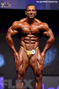 Ahmad Ahmad - 212 Bodybuilding - 2015 EVLS Prague Pro