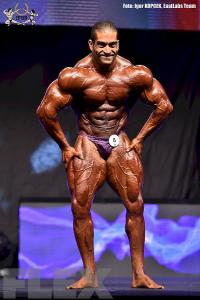 Raul Carrasco - 212 Bodybuilding - 2015 EVLS Prague Pro