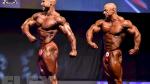212 Bodybuilding Comparisons - 2015 EVLS Prague Pro