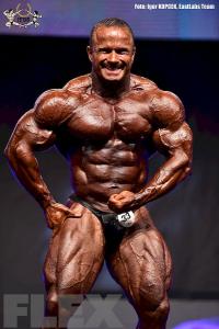 Ronny Rockel - Bodybuilding - 2015 EVLS Prague Pro